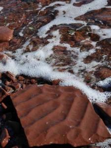Ископаемые знаки ряби в обломке красного песчаника.