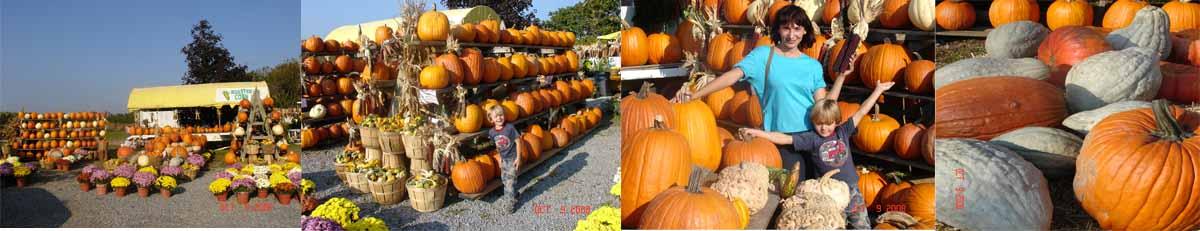 Хэллоуин – радостный праздник для всех людей. И детей, и взрослых. А оранжевый цвет – это цвет радости.