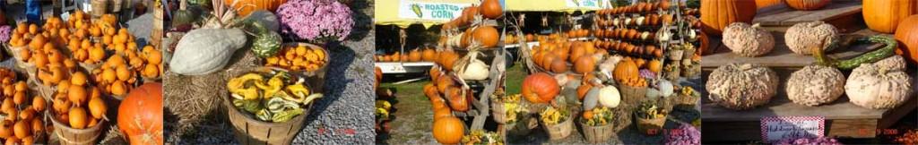 Символы не только Хэллоуина, но и богатого осеннего урожая.